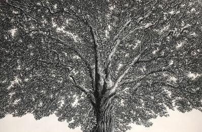 Ellen Wagener, 'Enlightenment Tree 2', 2020