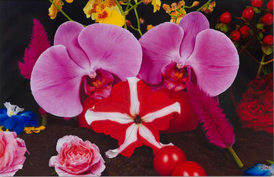 Marc Quinn, 'Under the Volcano (Pinacate Mexico)', 2012