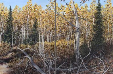 Vicki Kocher Paret, 'Willow Heights Trail #3, diptych', 2020