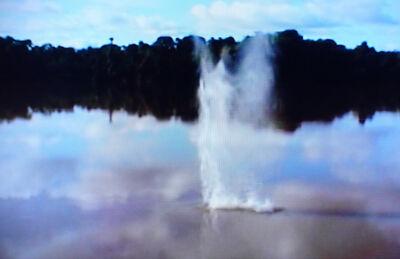 Alberto Baraya, 'El Rio', 2005