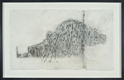 Maria Elena González, 'Birch Rubbing # 7', 2012