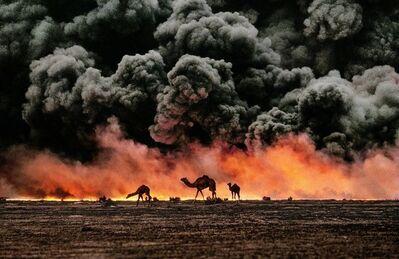 Steve McCurry, 'Camels and Oil Fields, Al Ahmadi, Kuwait', 1991