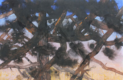 Christian de Laubadère 麓幂, 'The Murmur of Pines #5', 2014