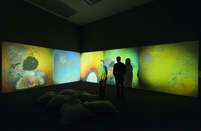 Gustav Metzger, 'Liquid Crystal Environment ', 1965-remade 2005