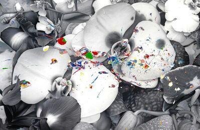Marc Quinn, 'Particle Ripple', 2012
