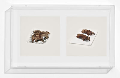 Taryn Simon, 'GUINEA PIGS (PROHIBITED)', 2010