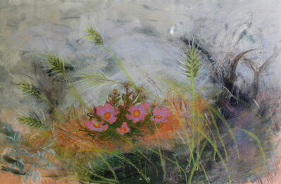 Winifred Nicholson, 'Nest of Rock Roses', 1967