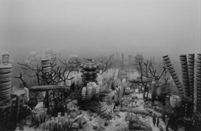 Hiroshi Sugimoto, 'Upper Devonian Period', 1992