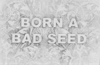 Amanda Manitach, 'Born A Bad Seed', 2016