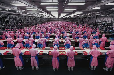Edward Burtynsky, 'Manufacturing #17, Deda Chicken Processing Plant, Dehui City, Jilin Province, China', 2005