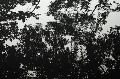 Stefan Thiel, 'Stechlinsee 3', 2013