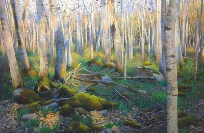 Deborah Ebbers, 'Forest Glen', 2018