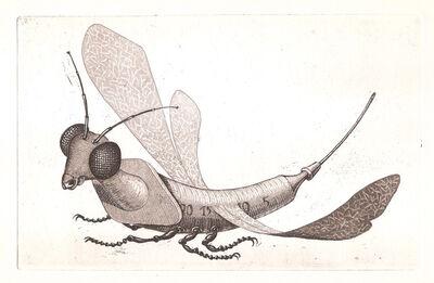 Claude Gondard, 'Incongruités. Recueil de gravures inventés...', 1971