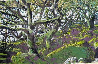 Philippa Beale, 'Wistman's Wood, Dartmoor', 2020