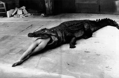 Helmut Newton, 'Crocodile Eating Ballerina, from the Pina Bausch Ballet 'Keushleitslegende', Wuppertal, 1983', ca. 1983