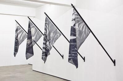 Rowan Smith, 'Trash Nationalism', 2016