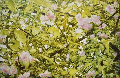 David Allen Dunlop, 'Emerging Spring', 2018