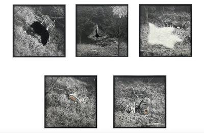 Wu Wei, 'Climbing the Mountain (5 pieces)', 2019