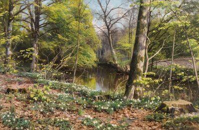 Peder Mørk Mønsted, 'Blooming Anemones', 1924