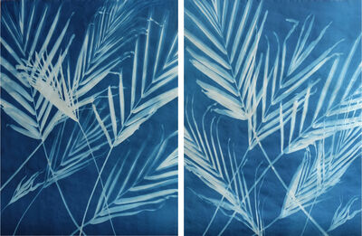 Tom Fels, 'Palms 2-28-19— 1 & 3 ', 2019