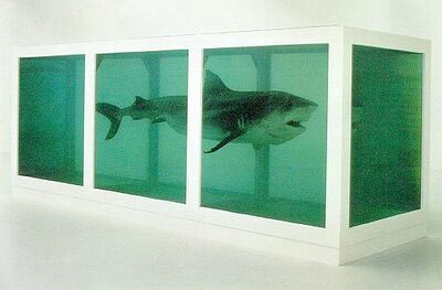 Damien Hirst, 'The Physical Impossibility of Death in the Mind of Someone Living', 1991