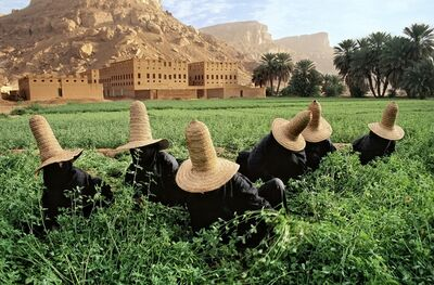 Steve McCurry, 'Clover Gatherers In Wadi Hadramawt, Near Shibam, Yemen', 1999