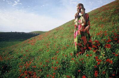 Fred Maroon, 'Afghanistan: Poppies near Kunduz', 1968