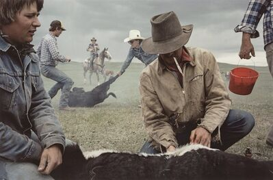 Sam Abell, 'Buffalo, Montana', 1985