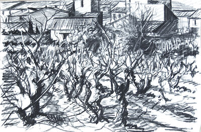 Geoffrey Lefever, 'Vines in winter', 1969