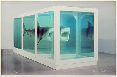 Damien Hirst, 'The Physical Impossibility of Death in the Mind of Someone Living', 2013