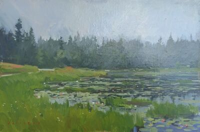 Marc Dalessio, 'Ames Pond No.3', 2017