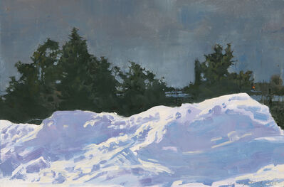Marilyn Turtz, 'Grey Sky in Winter'