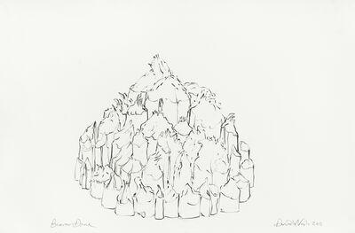 David Nash, 'Beaver Dome', 2011