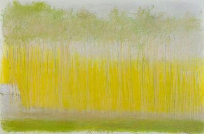 Wolf Kahn, 'Pale Yellow Landscape', 2011
