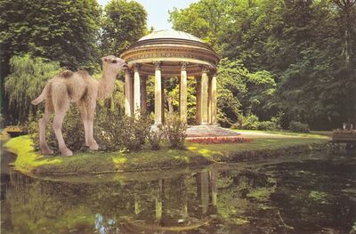 Vikky Alexander, 'Camel foal at Versailles', 2013