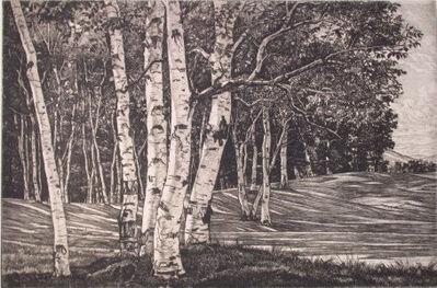 Luigi Lucioni, 'Birch Processional ', 1951