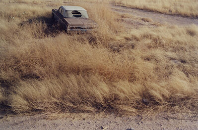 Matt Wilson, 'Untitled (Texas #1)', 2011