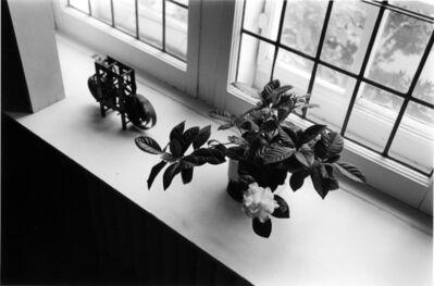 Charles Gagnon, 'Michio's Gardenia, Montreal 1974', 1996
