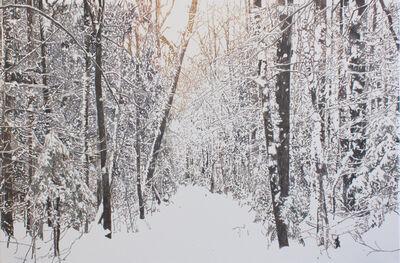 Julie Desmarais, 'Chemin de neige (Saint-Gilles, Québec)', 2019
