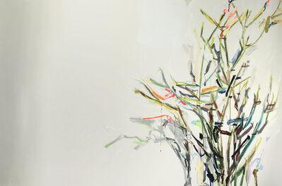 Diana Greenberg, 'Stick Plant', 2018