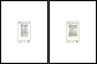 Bruce Eves, 'Episode 3  A948840 – Marriage Licence, P130842 – Medical  Certificate of Death-Form16  (diptych)', 2004