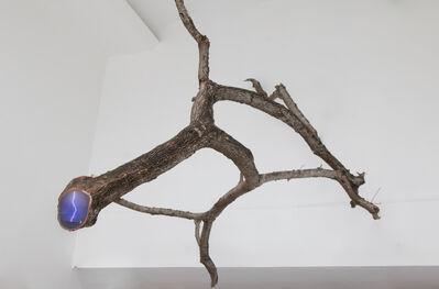 Rafael Villares, ' Eco # 23, Lightning over Washington DC - Fallen tree branch in Panama City', 2019