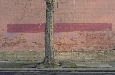 Tom Lovelace, 'Mural, Pink & Purple', 2015