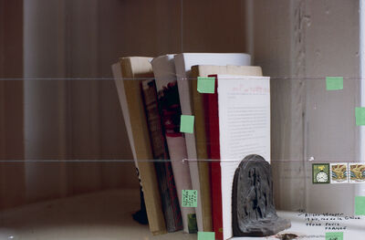 Moyra Davey, 'Cut Books', 2013