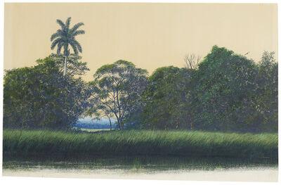 Tomás Sánchez, 'Untitled', 1982