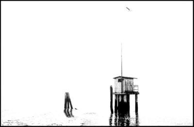 Carol Julien, 'Venice #5', 2017