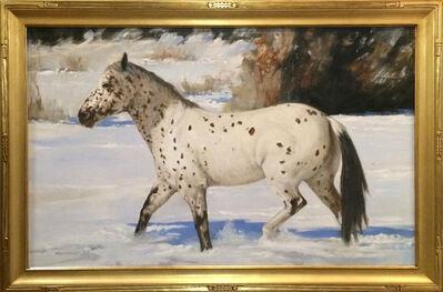 Roseta Santiago, 'Nambe Snow Pony', 2017