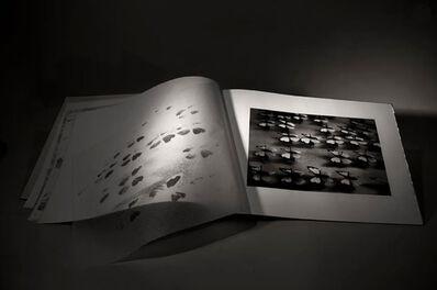 Patricia Lagarde, 'Dark Red Cabinet (Lepidóptera)', 2014