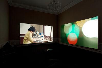 Arin Rungjang, 'Bones, Books, Artificial Lights and Fireflies ', 2015