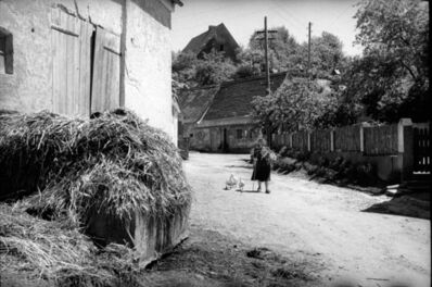 Fred Maroon, 'Woman with Geese, Leipheim, Germany ', 1950